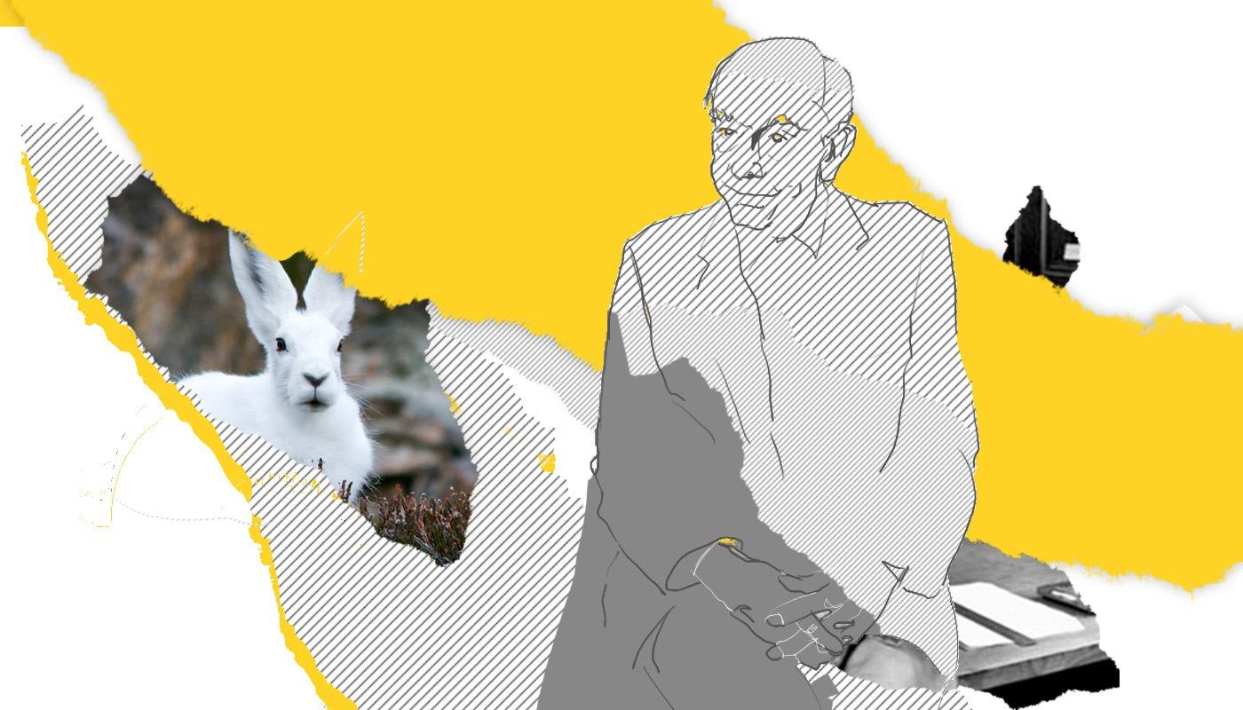 Философские звери и места их обитания